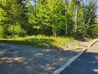 Terrain à vendre à Saint-Faustin/Lac-Carré, Laurentides, Chemin des Lacs, 27517745 - Centris.ca
