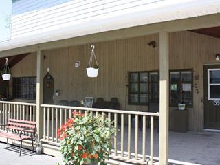 Maison à vendre à Saint-Camille-de-Lellis, Chaudière-Appalaches, 599, Rue  Principale, 24544070 - Centris.ca