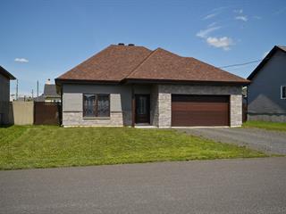 Maison à vendre à Notre-Dame-du-Bon-Conseil - Village, Centre-du-Québec, 231, Rue  Jérôme, 27463152 - Centris.ca