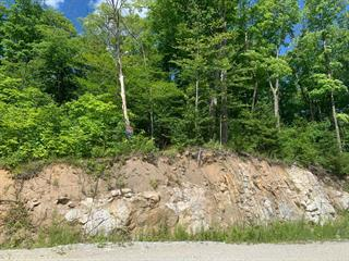 Terrain à vendre à Saint-André-Avellin, Outaouais, Chemin  Valdie, 11816880 - Centris.ca