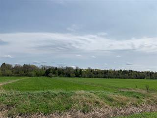 Land for sale in Saint-Roch-des-Aulnaies, Chaudière-Appalaches, Route  132, 10521410 - Centris.ca