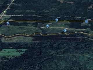 Land for sale in Saint-Marcellin, Bas-Saint-Laurent, Route  234, 14257367 - Centris.ca