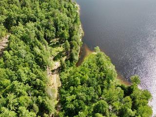 Lot for sale in Portage-du-Fort, Outaouais, 84, Rue  Lillian, 28534287 - Centris.ca