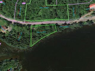 Lot for sale in Saint-Adolphe-d'Howard, Laurentides, Chemin des Bouleaux, 23167086 - Centris.ca