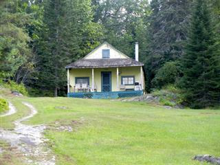 House for sale in Blue Sea, Outaouais, 1 - 5, Chemin  Foulds, 9774131 - Centris.ca