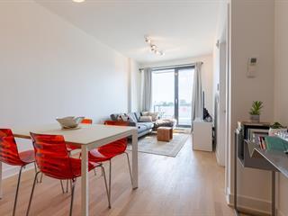 Condo / Appartement à louer à Montréal (Rosemont/La Petite-Patrie), Montréal (Île), 3100, Rue  Rachel Est, app. 425, 20184449 - Centris.ca
