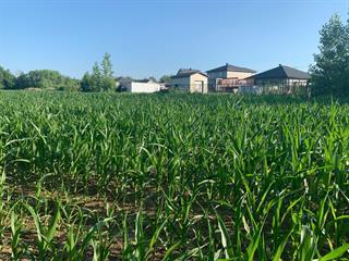Land for sale in Saint-Mathias-sur-Richelieu, Montérégie, Chemin  Richelieu, 10381025 - Centris.ca