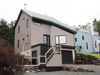 Maison à vendre à Saint-Malachie, Chaudière-Appalaches, 143, Rue  Labrecque, 20715409 - Centris.ca