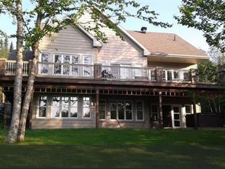 Maison à vendre à Lac-Etchemin, Chaudière-Appalaches, 114, Chemin des Tilleuls, 9119355 - Centris.ca