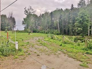 Lot for sale in L'Isle-aux-Coudres, Capitale-Nationale, Chemin de la Traverse, 21677422 - Centris.ca