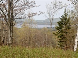 Terre à vendre à Bolton-Ouest, Montérégie, Chemin  Lakeview, 11798174 - Centris.ca