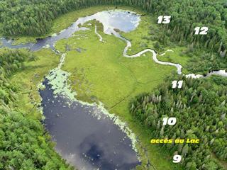 Terrain à vendre à Sainte-Émélie-de-l'Énergie, Lanaudière, 9, Chemin du Lac-Vase, 14942312 - Centris.ca