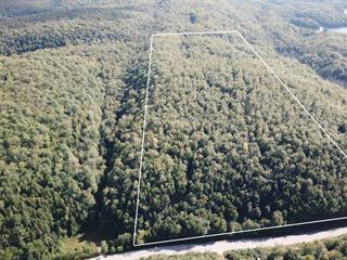 Land for sale in Chénéville, Outaouais, Route  315, 13296933 - Centris.ca