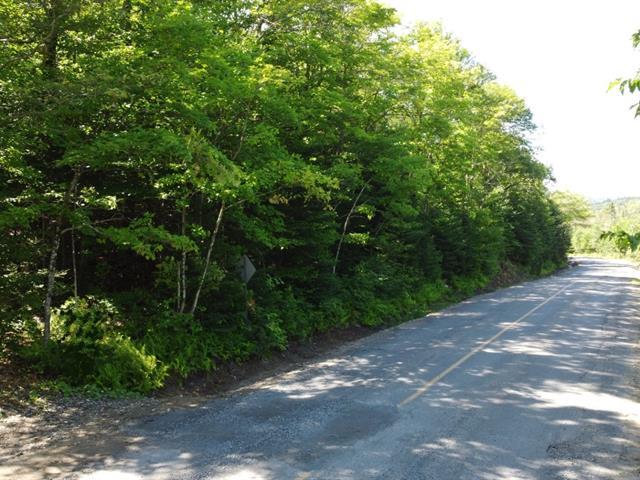 Terrain à vendre à Sainte-Marguerite-du-Lac-Masson, Laurentides, Chemin du Lac-Violon, 27660701 - Centris.ca