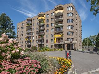Condo for sale in Québec (La Cité-Limoilou), Capitale-Nationale, 630, Avenue  Murray, apt. 301, 22502123 - Centris.ca