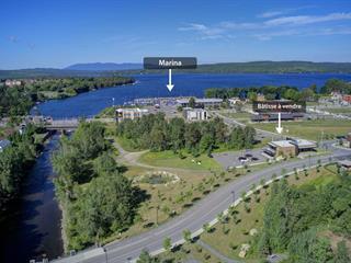 Bâtisse commerciale à vendre à Lac-Mégantic, Estrie, 5601 - 5605, Rue  Papineau, 12494128 - Centris.ca