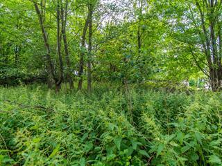 Lot for sale in Sherbrooke (Brompton/Rock Forest/Saint-Élie/Deauville), Estrie, Rue  Fabien, 10603084 - Centris.ca