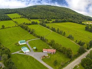 Maison à vendre à Chesterville, Centre-du-Québec, 9051Z, Rang  Saint-Philippe, 23182225 - Centris.ca