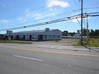 Bâtisse commerciale à vendre à Rimouski, Bas-Saint-Laurent, 453 - 451, boulevard  Sainte-Anne, 23469435 - Centris.ca