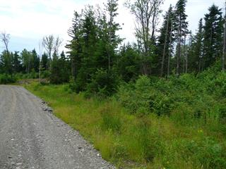 Lot for sale in Saint-Herménégilde, Estrie, Chemin  Armand-Martineau, 21263091 - Centris.ca