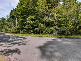 Lot for sale in Bromont, Montérégie, Rue de Drummond, 28535608 - Centris.ca