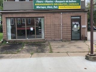 Income properties for sale in Shawinigan, Mauricie, 1173 - 1177, Avenue de Grand-Mère, 19903361 - Centris.ca