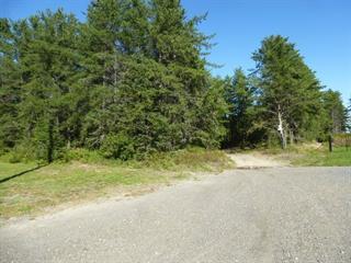 Terre à vendre à Saint-Ambroise, Saguenay/Lac-Saint-Jean, Rue du Pont Est, 11932261 - Centris.ca