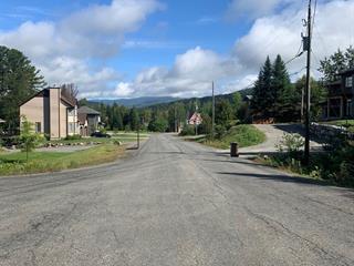 Terrain à vendre à Mont-Tremblant, Laurentides, Rue des Grands-Pins, 21279325 - Centris.ca