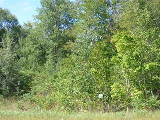 Terrain à vendre à Brownsburg-Chatham, Laurentides, Route du Nord, 28987901 - Centris.ca