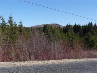 Terrain à vendre à Saint-Herménégilde, Estrie, Chemin  Lebel, 18140833 - Centris.ca