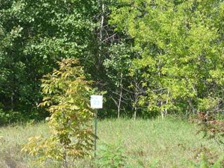 Lot for sale in Brownsburg-Chatham, Laurentides, Route du Nord, 18280861 - Centris.ca