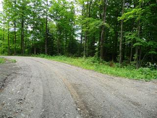 Lot for sale in Saint-Herménégilde, Estrie, Chemin  Armand-Martineau, 24189431 - Centris.ca