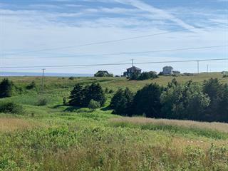 Land for sale in Les Îles-de-la-Madeleine, Gaspésie/Îles-de-la-Madeleine, Chemin de la Montagne, 14243055 - Centris.ca