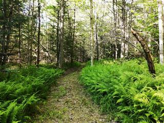 Land for sale in Bolton-Est, Estrie, 348, Chemin  Bellevue, 16268303 - Centris.ca