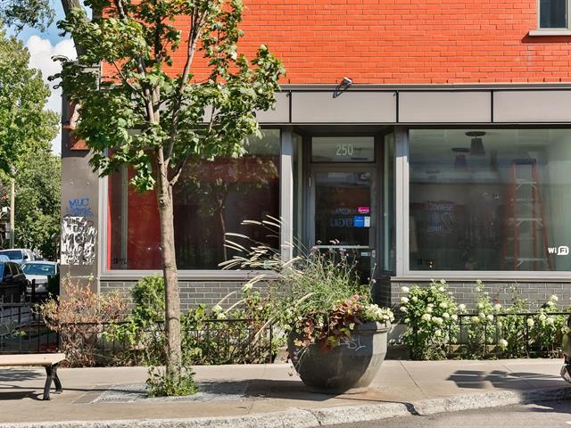 Commercial unit for rent in Montréal (Le Plateau-Mont-Royal), Montréal (Island), 250, Rue  Bernard Ouest, 20191911 - Centris.ca