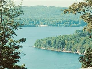 Lot for sale in Lac-Simon, Outaouais, Chemin de L'Indien, 24430438 - Centris.ca