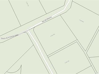 Terrain à vendre à Chertsey, Lanaudière, Rue des Bassons, 27165249 - Centris.ca