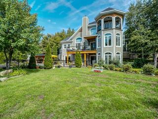 Maison à vendre à Pontiac, Outaouais, 65, Chemin du Sumac, 12979778 - Centris.ca