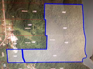 Lot for sale in Grand-Remous, Outaouais, Route  Transcanadienne, 16937917 - Centris.ca