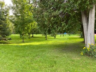 Lot for sale in Dudswell, Estrie, Rue  Main, 24389008 - Centris.ca