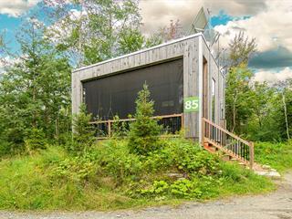 House for sale in Eastman, Estrie, 85, Allée  Verte, 23400710 - Centris.ca