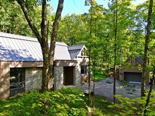 Maison à vendre à Mont-Tremblant, Laurentides, 220, Chemin  Claude-Lefebvre, 12665779 - Centris.ca