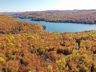 Terrain à vendre à Mont-Tremblant, Laurentides, Chemin des Boisés, 26044095 - Centris.ca