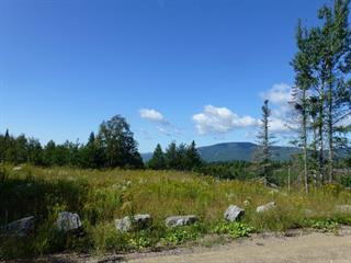 Lot for sale in Saint-Joachim, Capitale-Nationale, Rue  Bellevue, 20041912 - Centris.ca