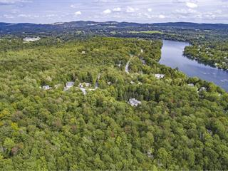 Terrain à vendre à Sherbrooke (Brompton/Rock Forest/Saint-Élie/Deauville), Estrie, Avenue du Parc, 11470641 - Centris.ca