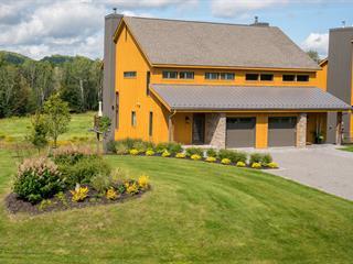 Maison à vendre à Mont-Tremblant, Laurentides, 412, Allée des Chevaux-Blancs, 11257534 - Centris.ca