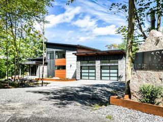 Maison à vendre à Mont-Tremblant, Laurentides, 185, Chemin  Jean-Paul-Lemieux, 27829161 - Centris.ca