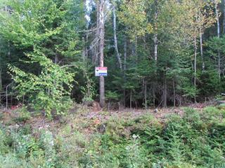Terrain à vendre à Sainte-Marguerite-du-Lac-Masson, Laurentides, Rue des Lupins, 25042891 - Centris.ca