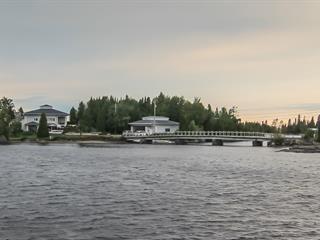 Chalet à vendre à Alma, Saguenay/Lac-Saint-Jean, 8200, Chemin de la Coopérative, 17051423 - Centris.ca