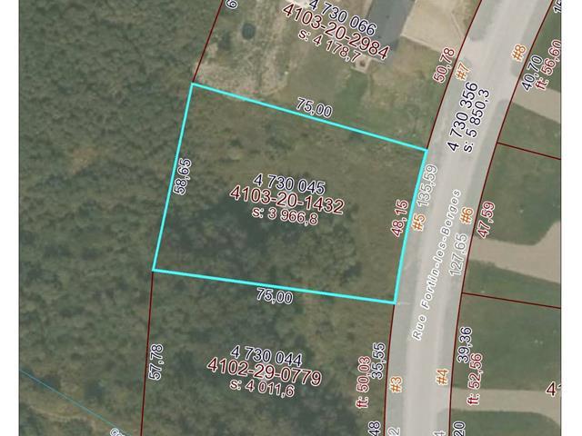 Lot for sale in Macamic, Abitibi-Témiscamingue, 5, Rue  Fortin-les-Berges, 25012261 - Centris.ca